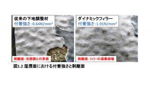 湿潤面における付着強さと剥離面